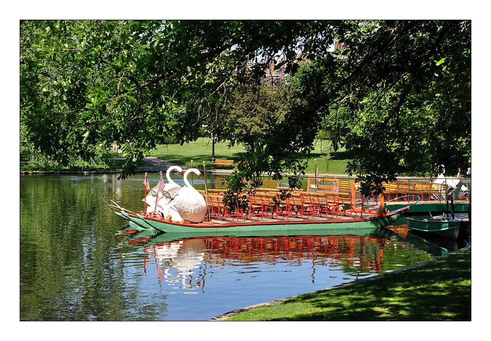 Schwanenboote im Public Garden