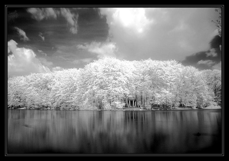 Schwanensee ;-)