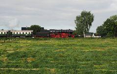 schwarz-rot-grün