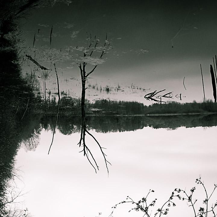 Schwarze Natur