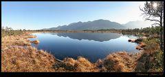 ~ Schwarzer Moorsee I ~