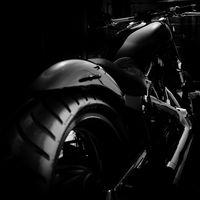 schwarz.licht