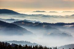 ..Schwarzwald...