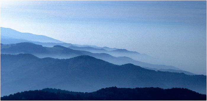 Schwarzwald ganz in Blau