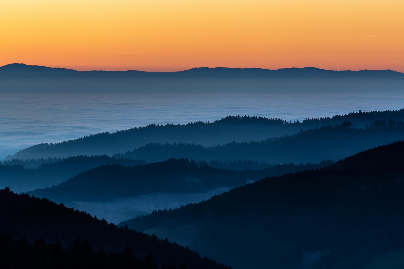 Schwarzwald im Nebelmeer