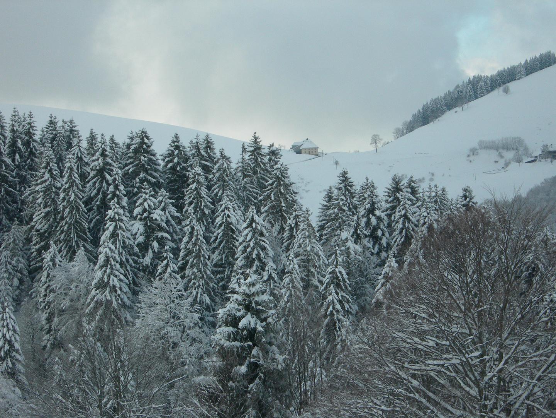 Schwarzwald Münstertal Winter