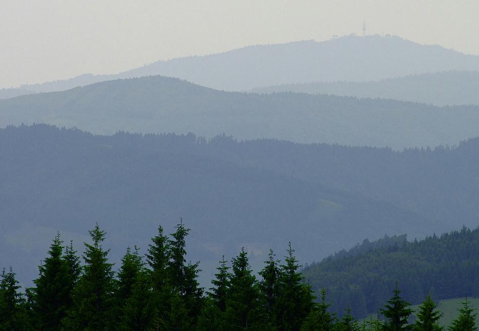 Schwarzwald - Strukturen