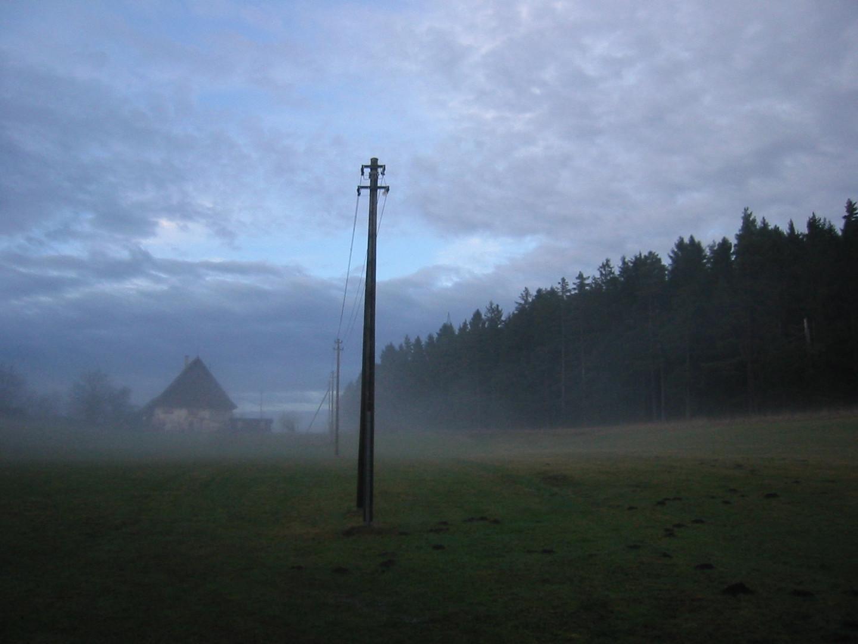 Schwarzwaldhaus im Nebel
