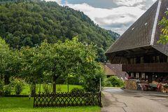 Schwarzwaldhaus in Geschwend