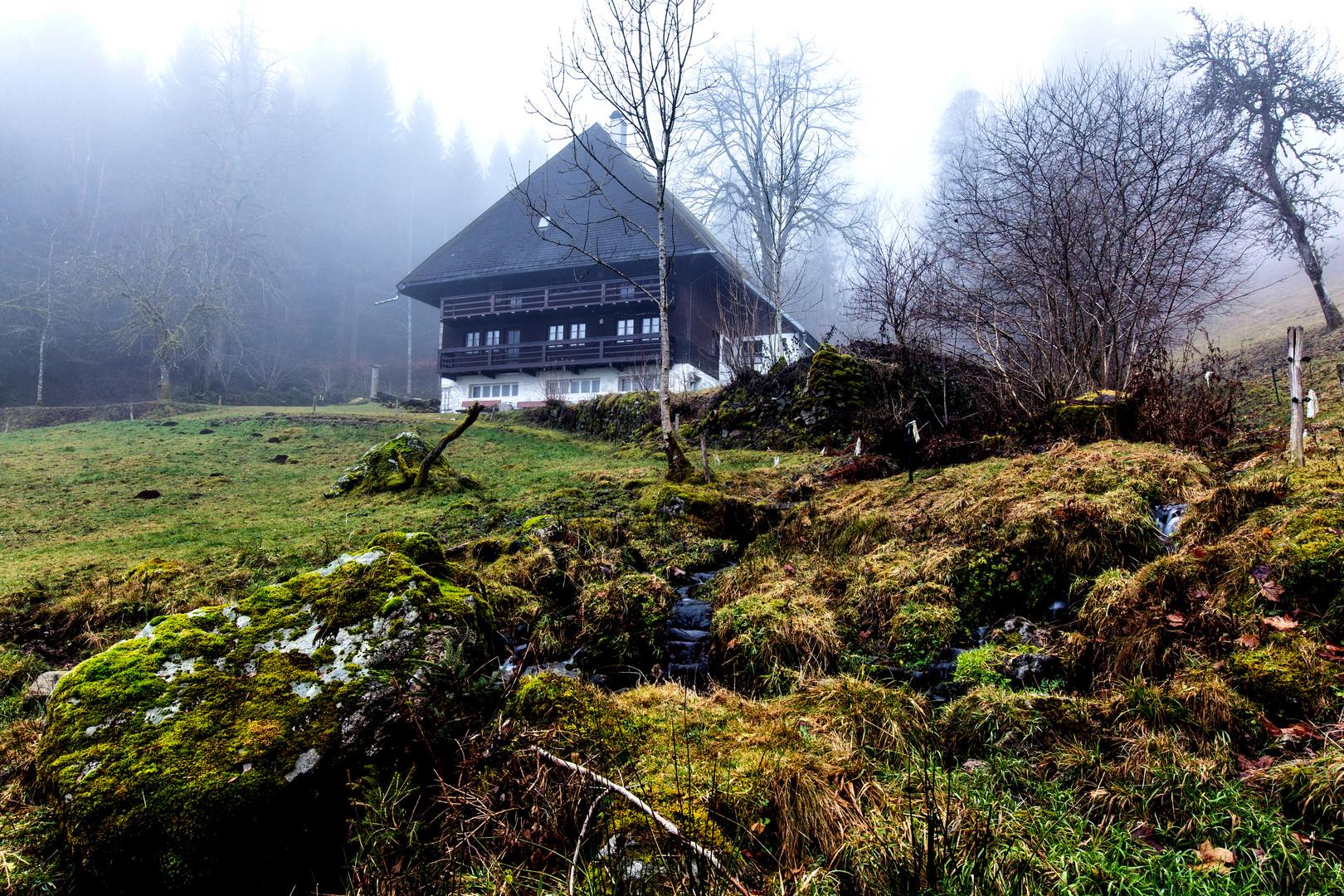 Schwarzwaldhof im Nebel