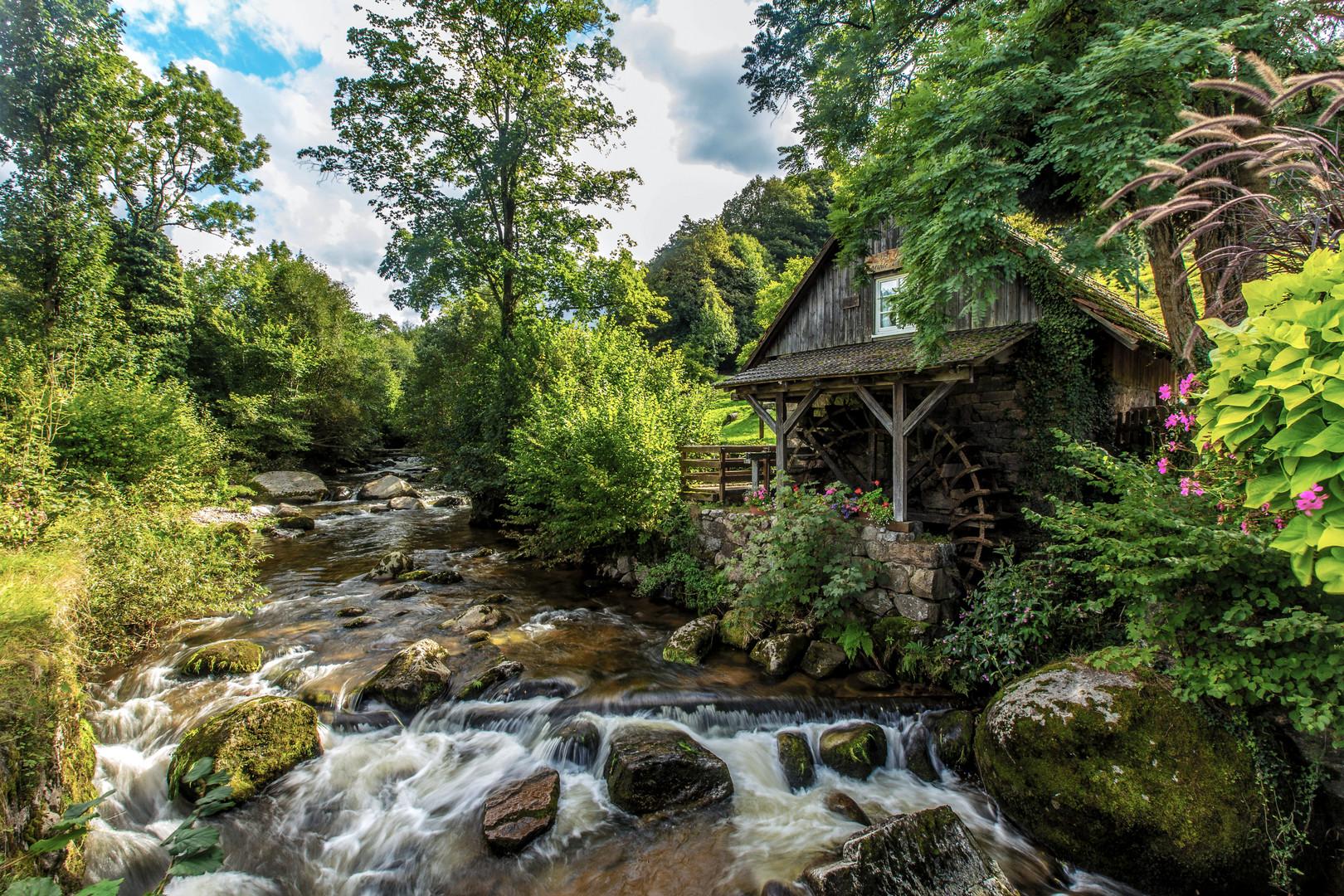 Schwarzwaldmühle: Rainbauernmühle