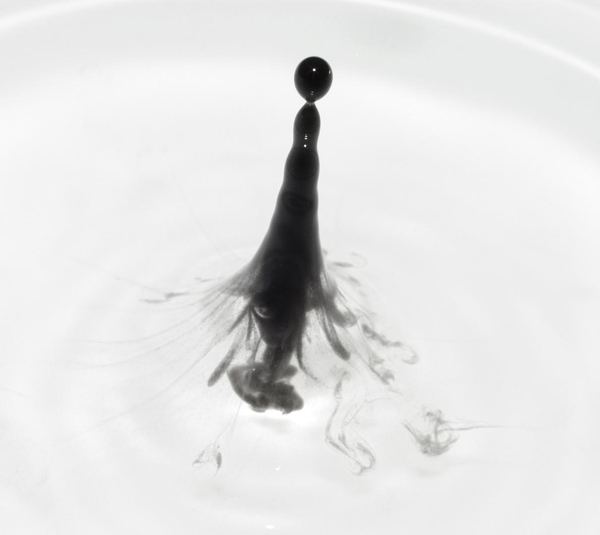schwarz/weiss