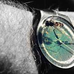 Schwebi: Wie spät ist es?
