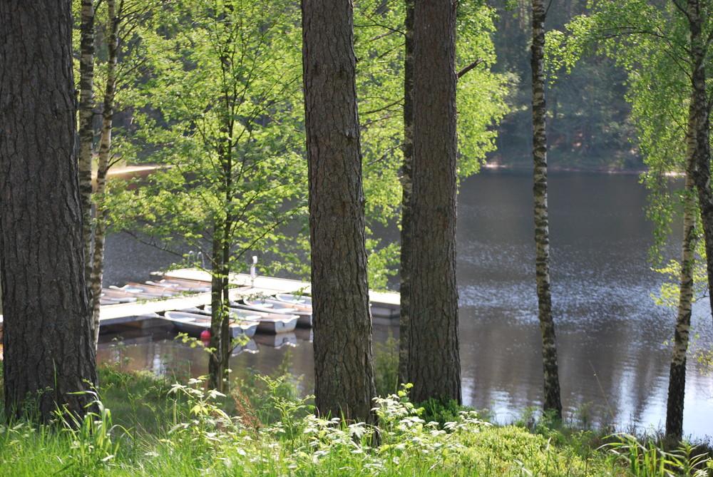 schwedische Natur pur