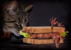 Schwein auf Toast