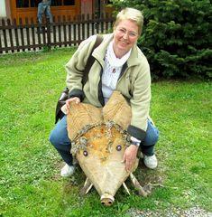 Schwein gehabt :-))