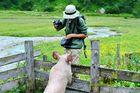 Schweinisches Foto-Shooting