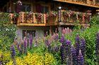 Schweiz, Wallis, Walliser Chalet mit Sommergarten