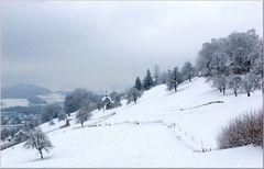 Schweizer Bergwinter