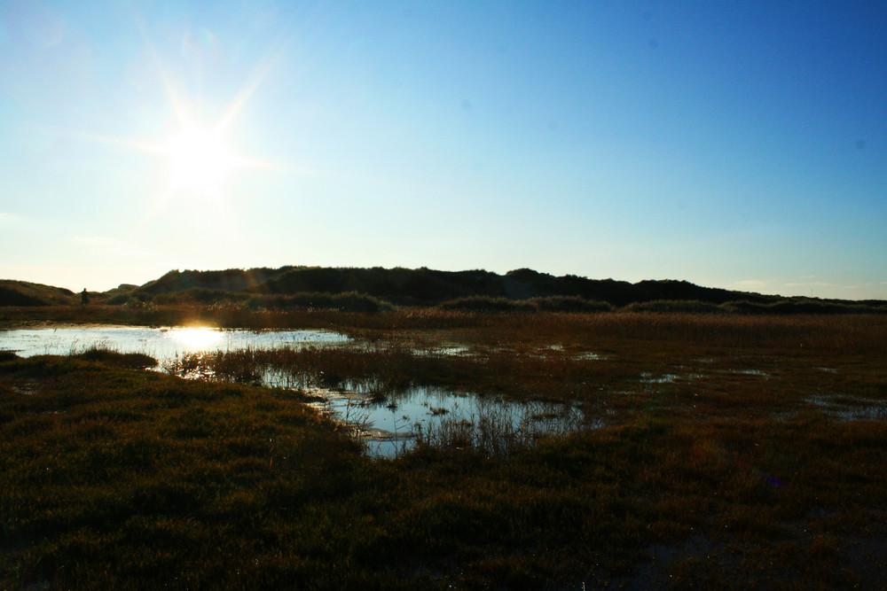 Schwemmland in Dänemark