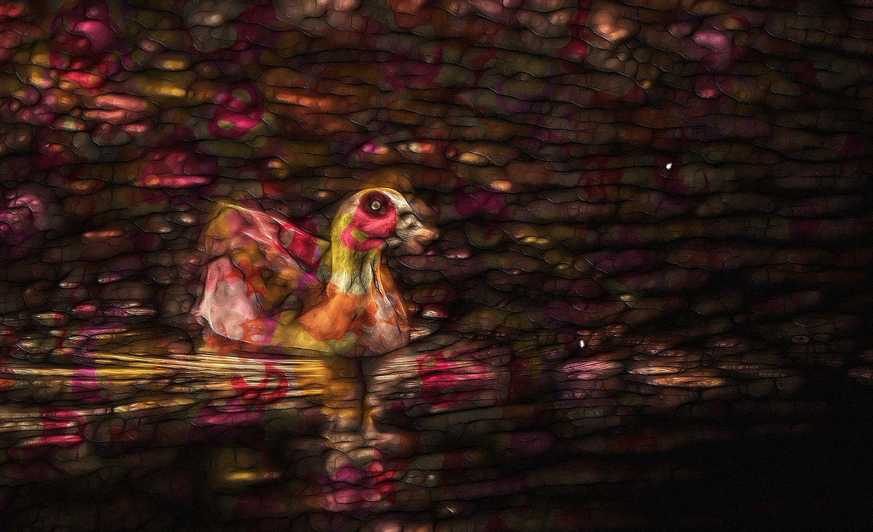 schwimmen in bunten farben ...