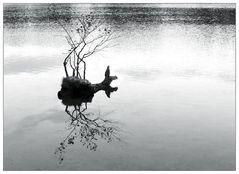 Wasser+Spiegelungen
