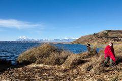 Schwimmende Inseln auf dem Titicaca See