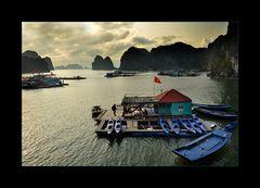 Schwimmendes Dorf in der Halong Bucht