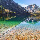 Schwimmendes Herbstlaub