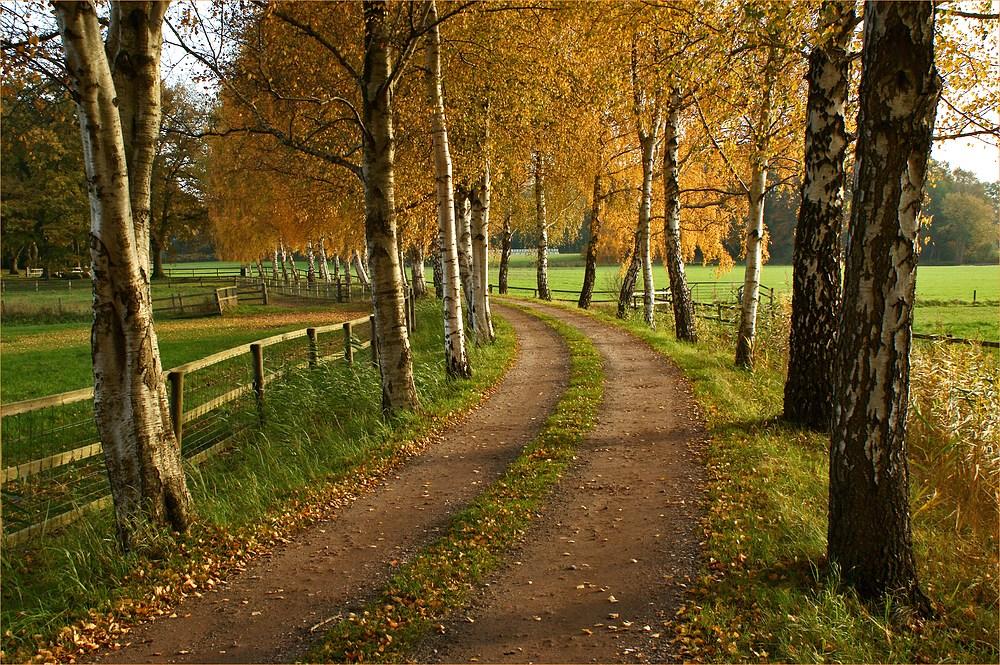 Schwungvoll in den Herbst