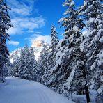 Sciando sulla Dobbiaco - Cortina