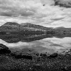 Scotland 13