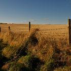Scotland - On The Road I
