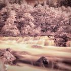 Scotlands water