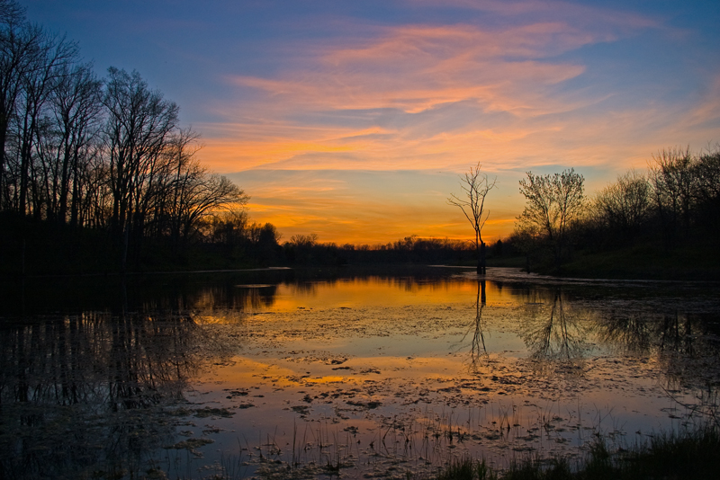 Scott County, Kentucky USA