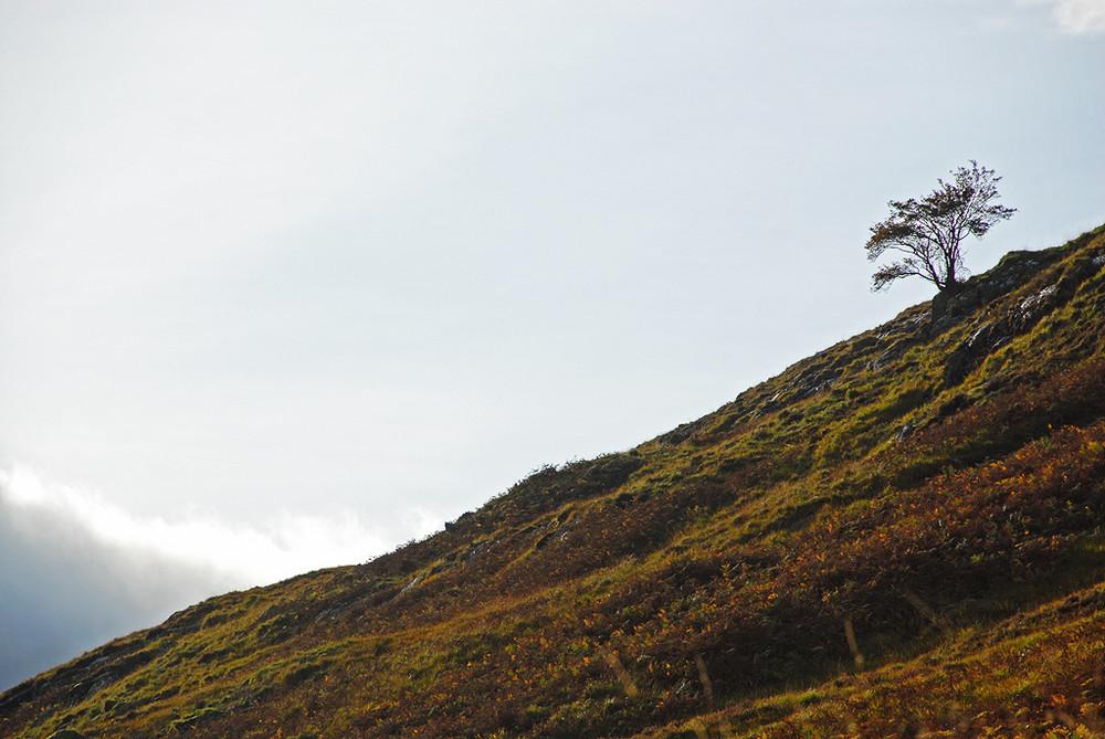 Scottish Highlands Gebirge