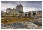 Scottish Icon (colour)