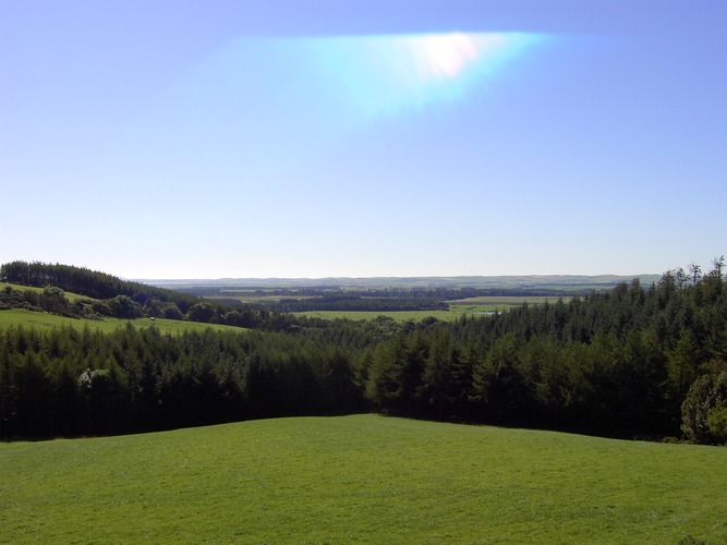 Scottish Meadow