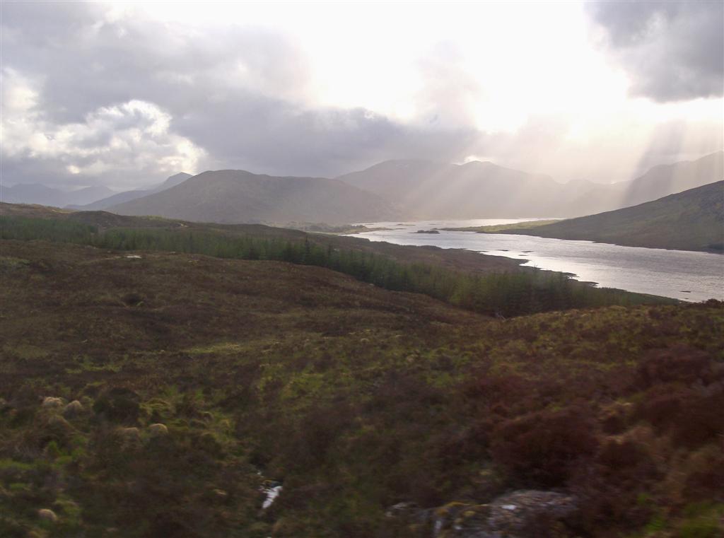 Scottish Moorland