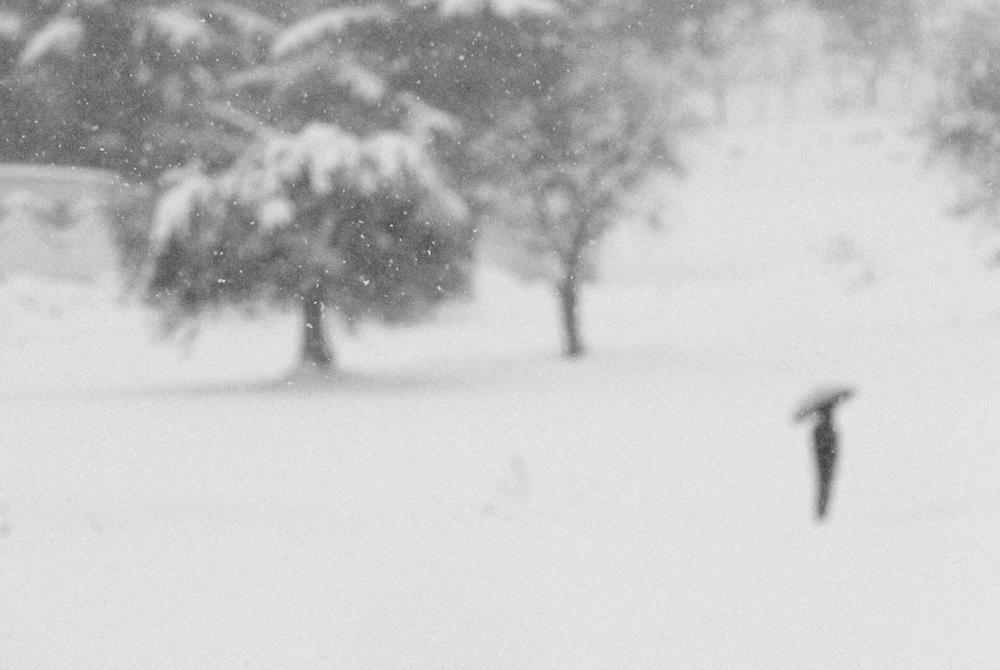 Se una notte d'inverno un viaggiatore