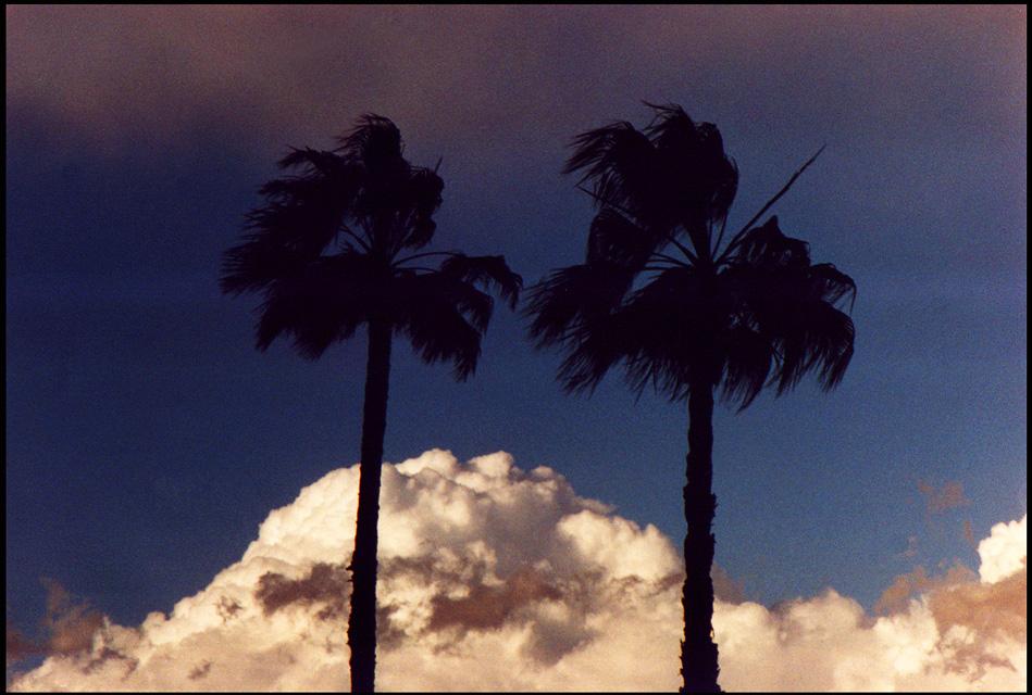 se viene la tormenta