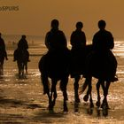 Sea Horse Riders