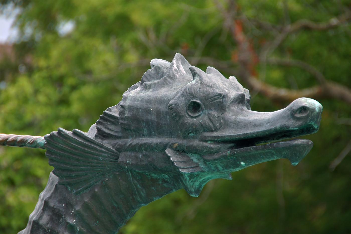 ..Sea Horses Detail..
