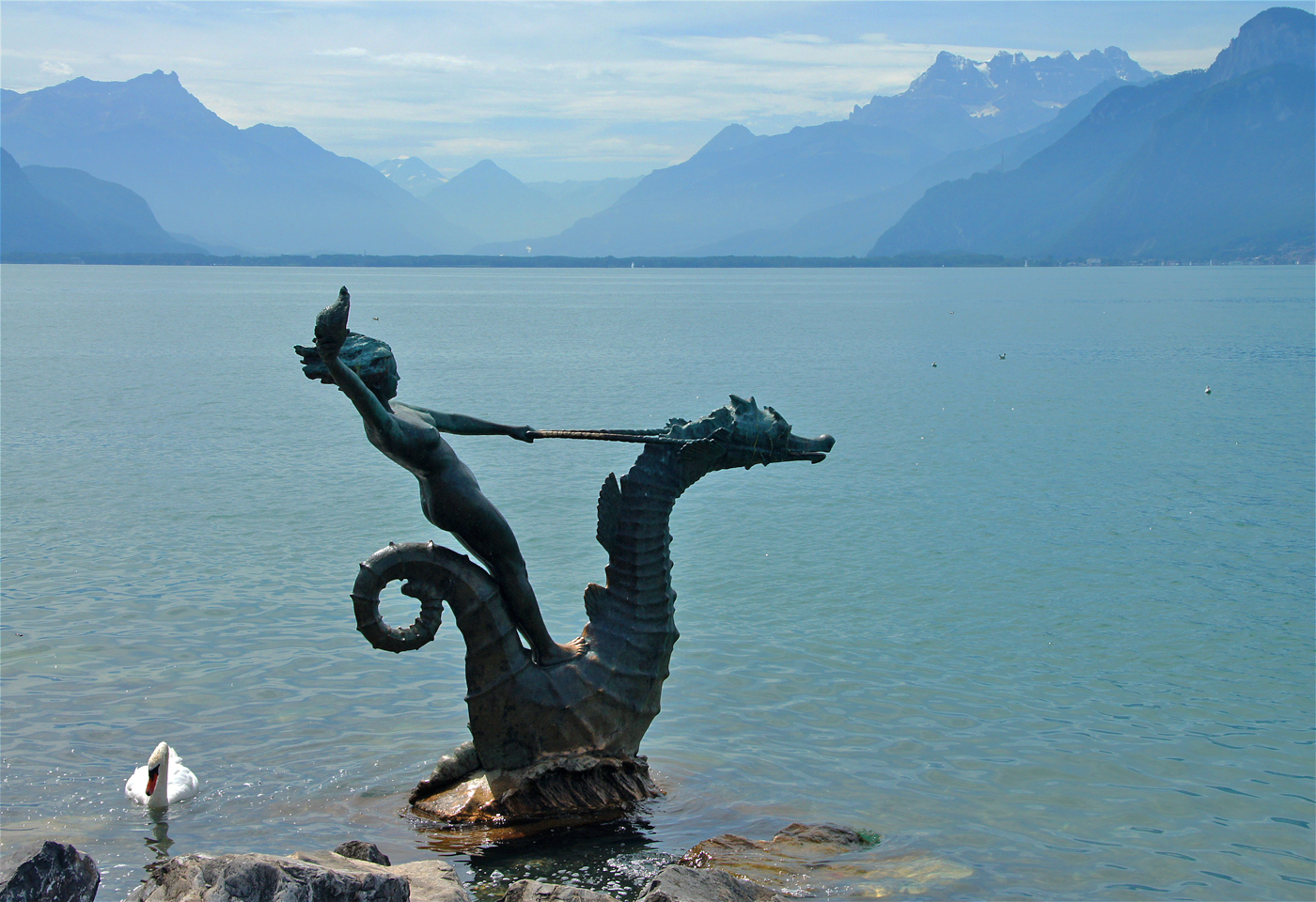 ..Sea Horses im See 2..