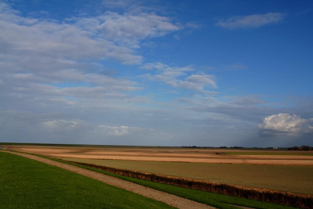 Sea landscape Westhoek Holland