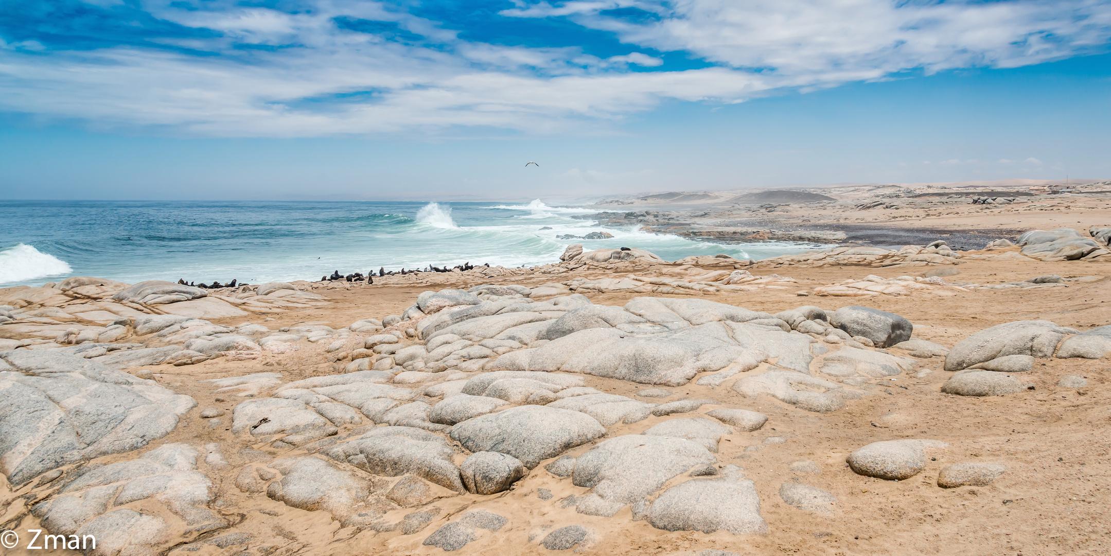 Seal Refuge on Skeleton Coast