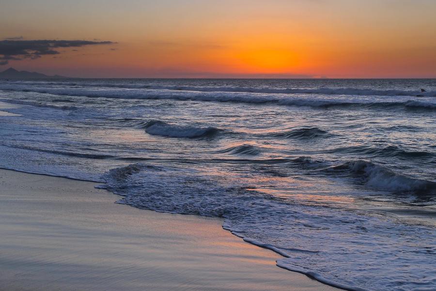 Seaside Dream IV
