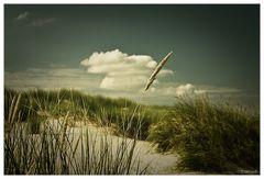 seaside.rendezvous.01