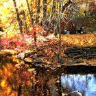 Seasons Glare