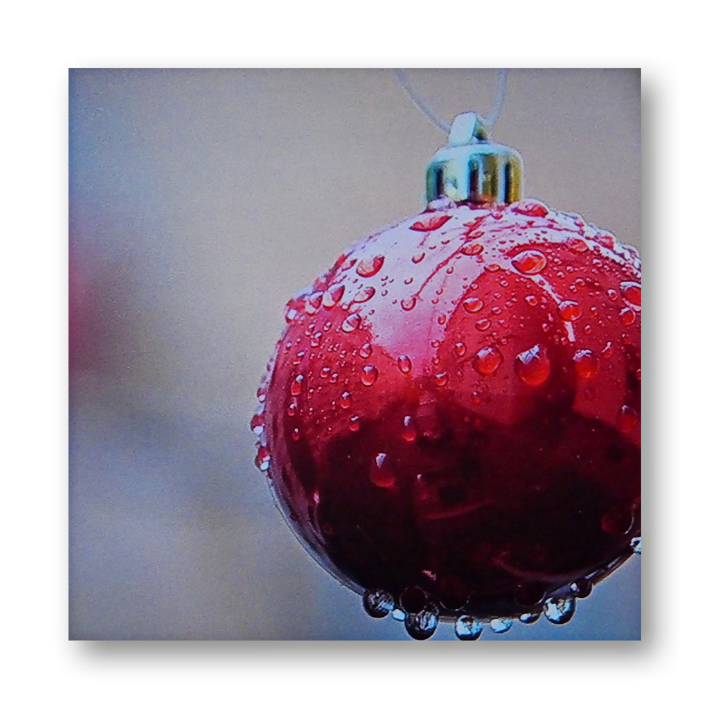 Seasons Greetings, Merry Christmas